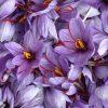 Saffron-cbc66ccff65c0f673ad3fec95fd601347b0fcb72